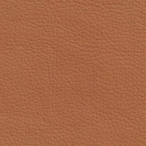 Светло-коричневый цвет материал стронг